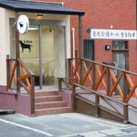 老犬介護ホームろうたす